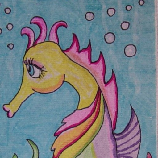 cropped-Suzie-the-seahorse.jpg
